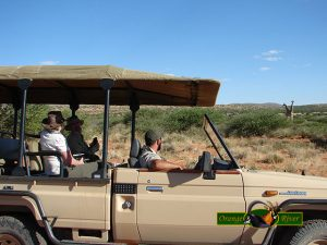 Orange River Hunting & Safari's
